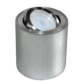 Oprawa sufitowa FEBE natynkowa ruchoma srebrna